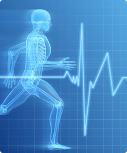 running skeleton with next to heart rate sign